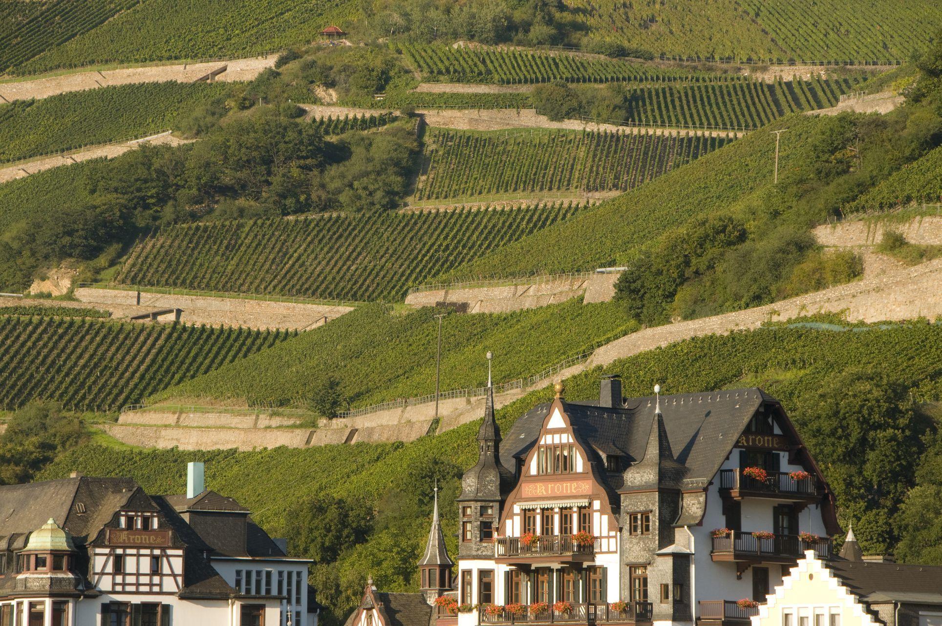Ruddesheim Wine Village With Hiking Cycling Mit Bildern Rudesheim Am Rhein Kulturlandschaft Welterbe
