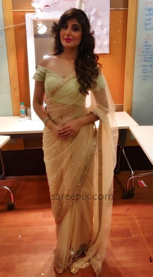 Kritika Kamra In Transparent Saree  Celebs In Sarees And -7573