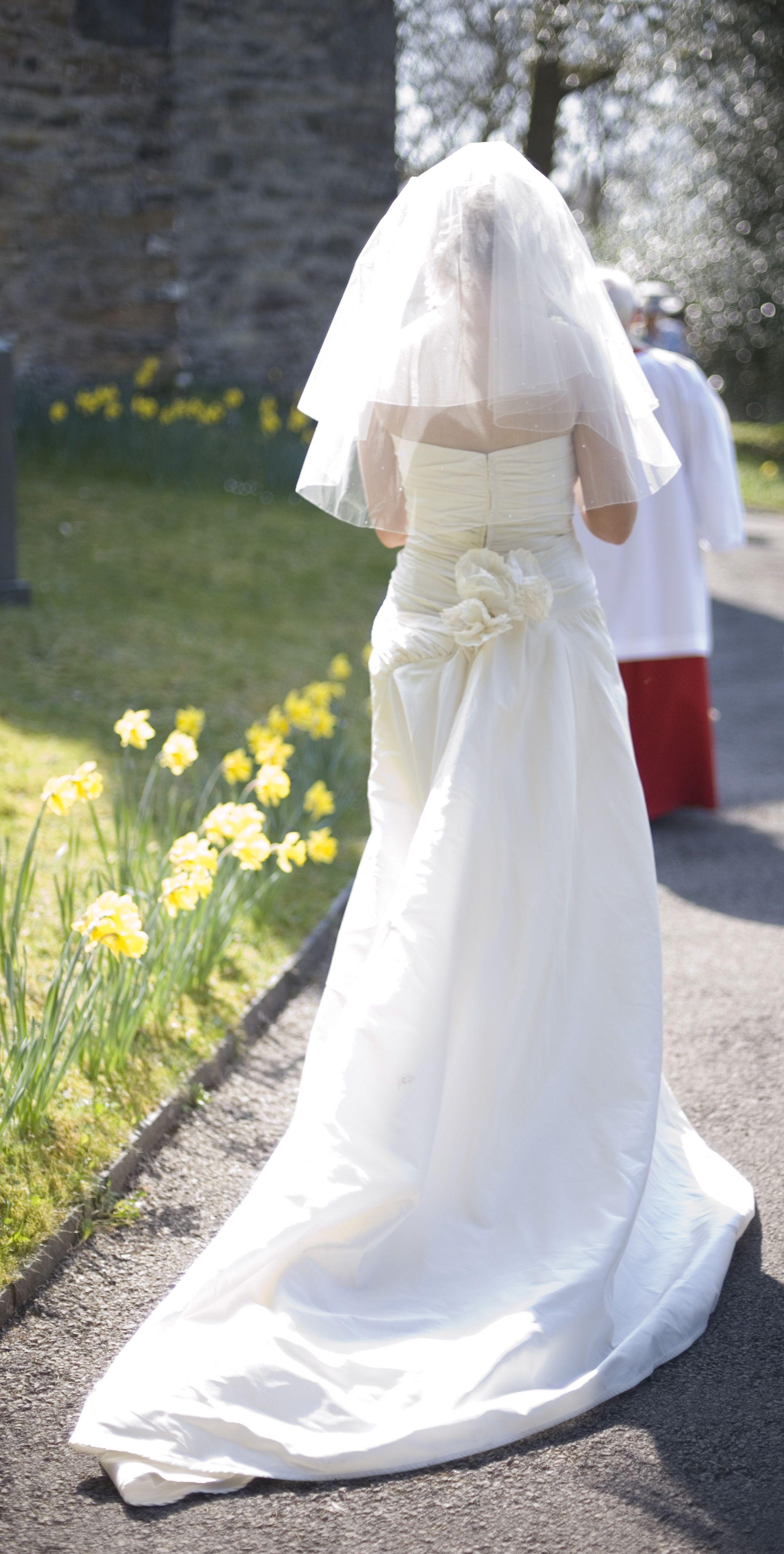 bride_and_veil.jpg 2,056×4,072 pixels