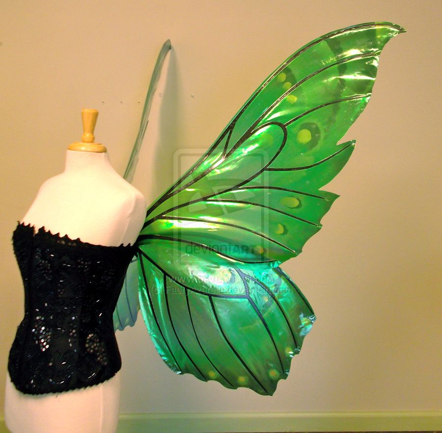 delias giant green butterfly fairy wings side by