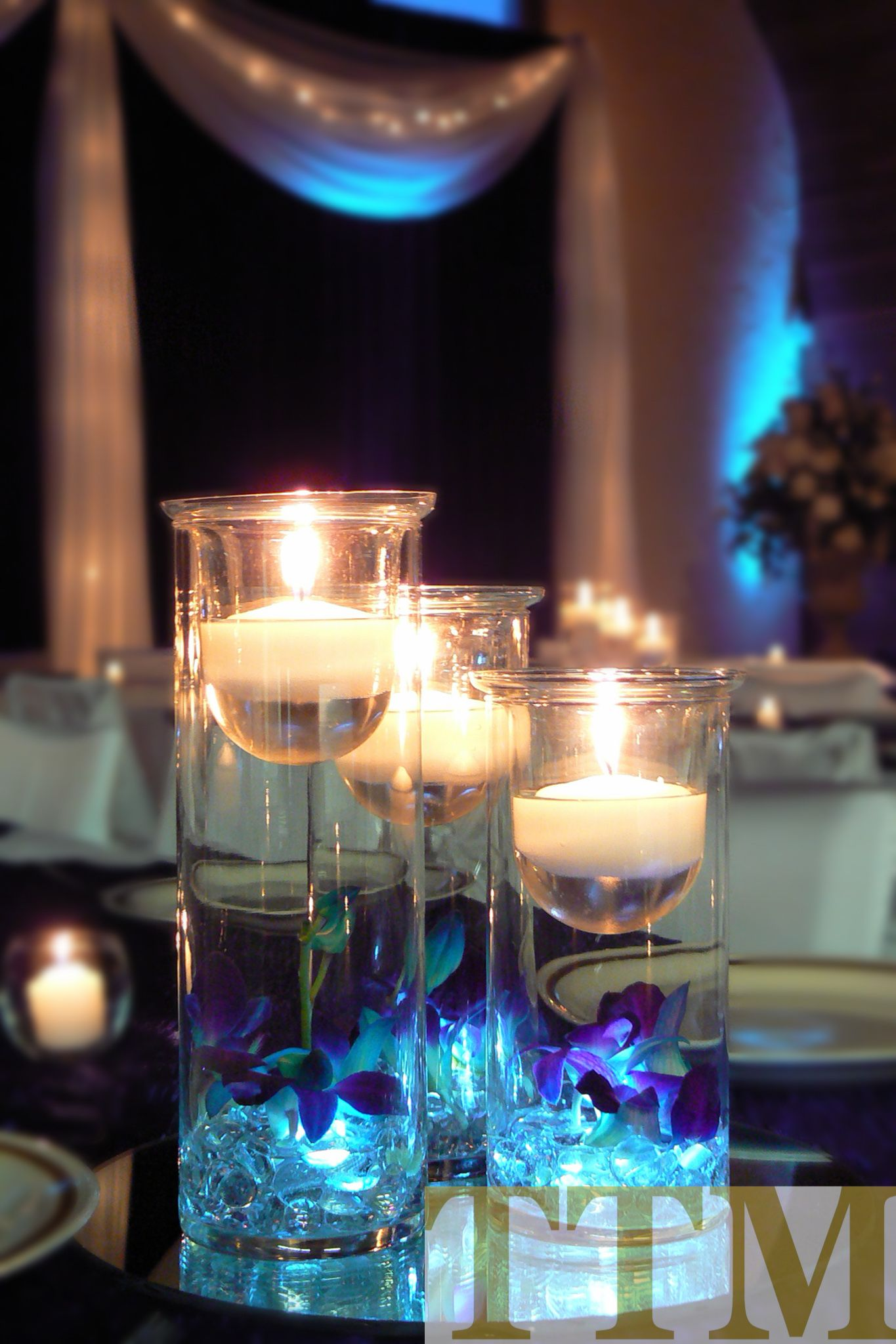 Purple and blue wedding decor  Beautiful Orchids lit up with battery operated blue lights orchids