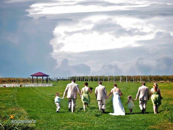 Country Wedding At Talon Winery - Lexington, KY