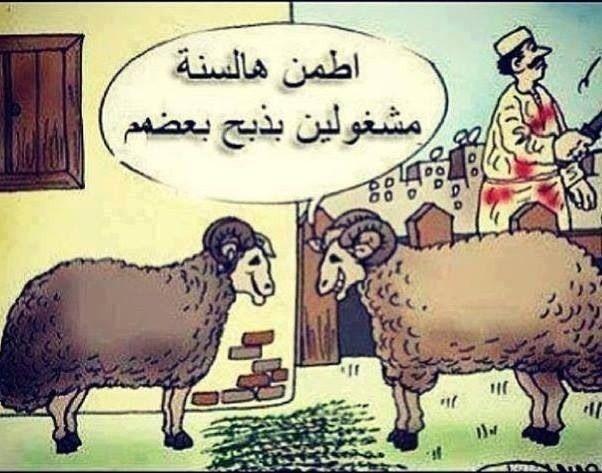 والله معك حق Moose Art Art Animals