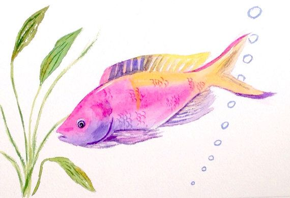 Tropical Fish Original Watercolor Fish Art By Colorofchlorophyll