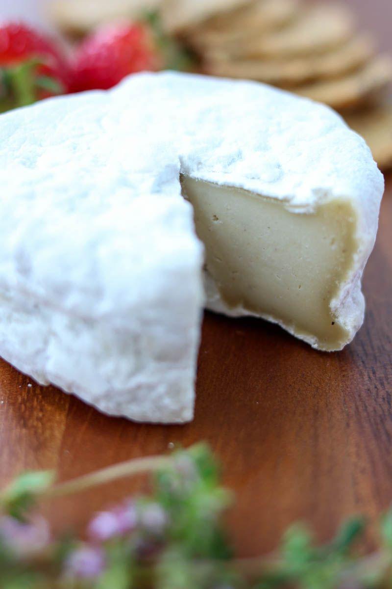 Cultured Aged Vegan Cheese Recipe Food Vegan Cheese Cheese