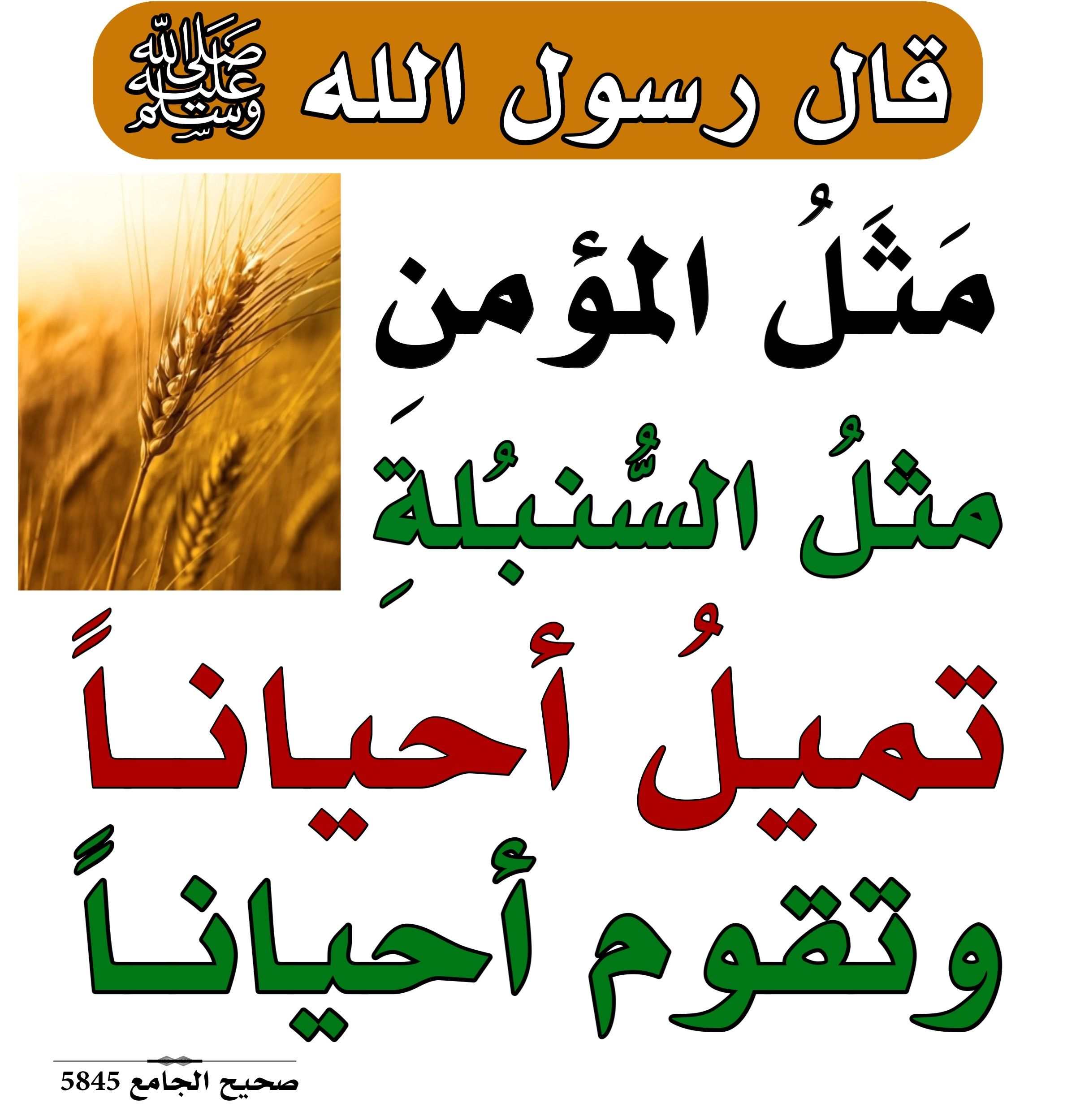 Pin By الأثر الجميل On أحاديث نبوية Islamic Quotes Islamic Phrases Islamic Quotes Wallpaper