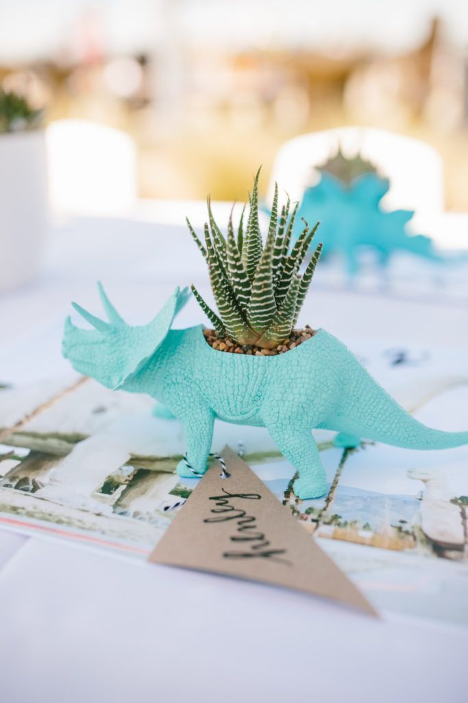 Dinosaur Party Court turns 2 Roar Birthdays