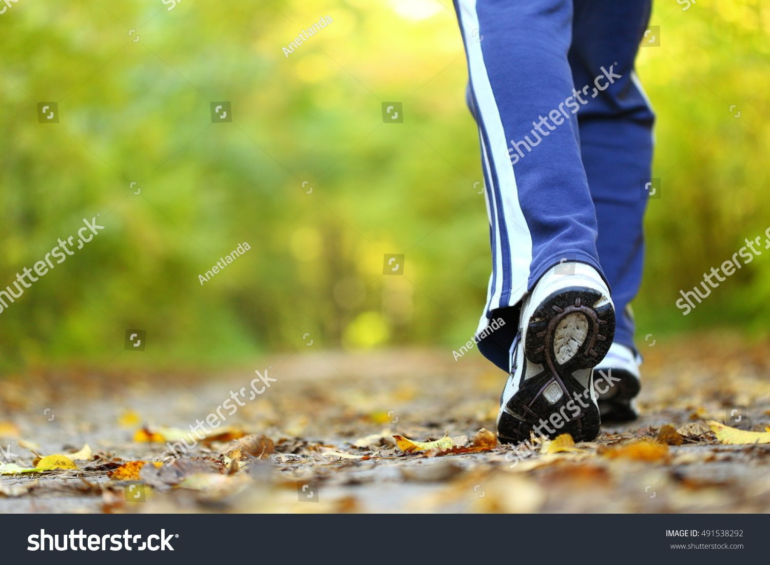 walking cross country and trail in autumn forest ,Woman walking cross country and trail in autumn forest ,