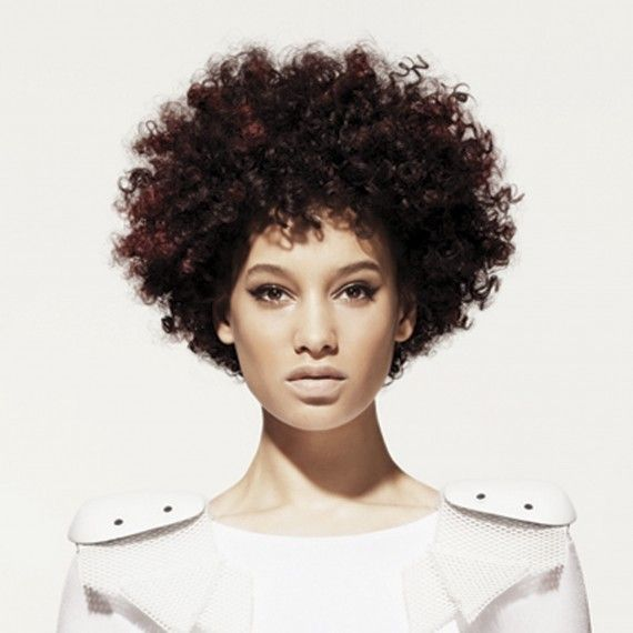 afro short curly hairstyles for women - Hairstyles Parlor
