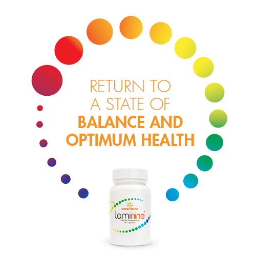 Restore Your Health - return to a state of the optimum health