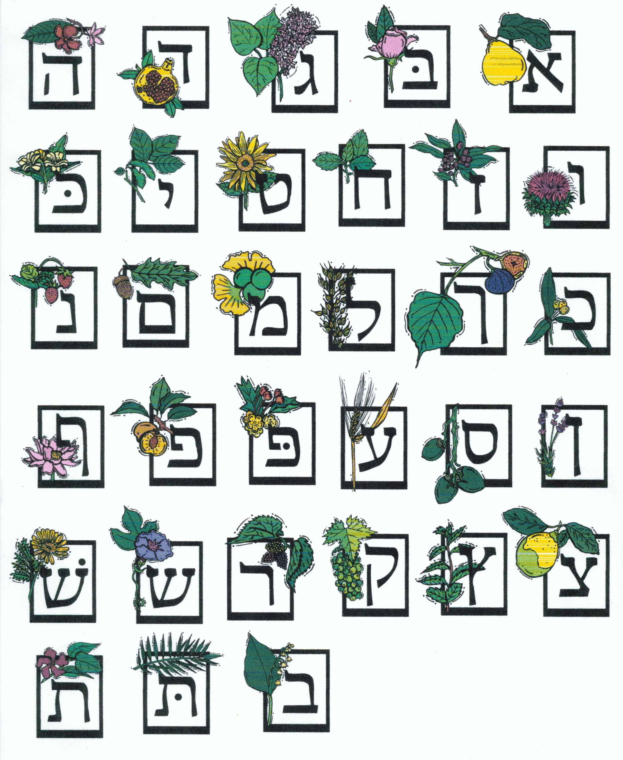 Jewish Illustrations