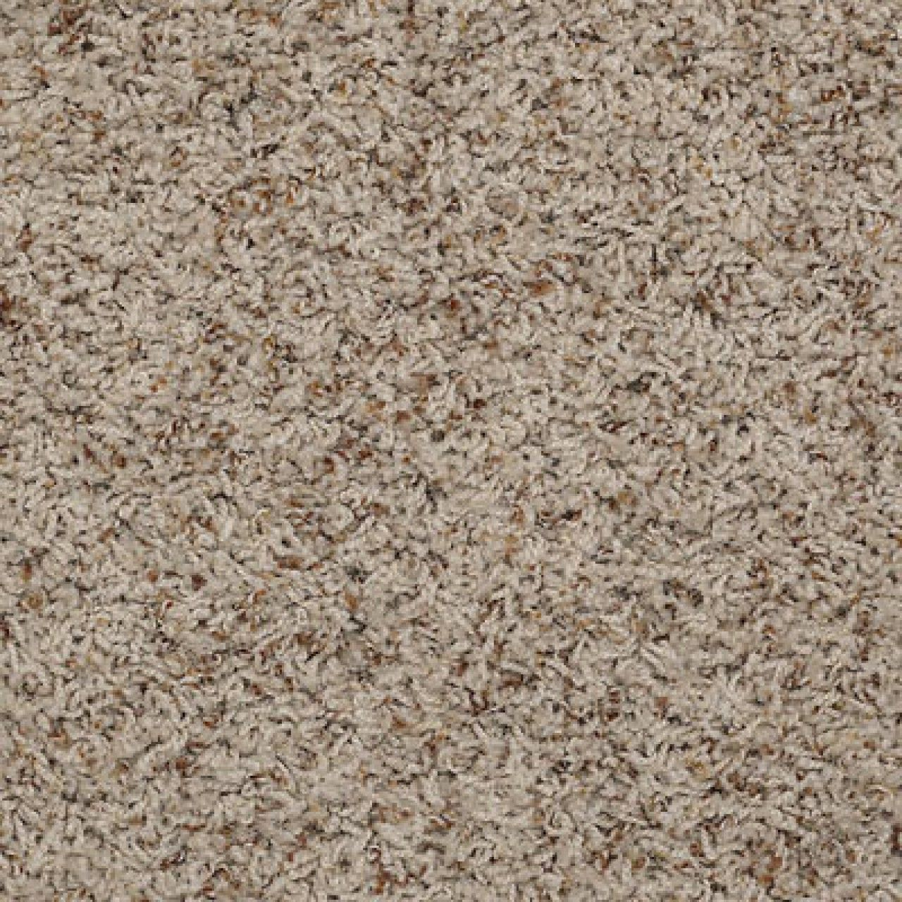 Shaw Alamar B Q4532 Shell Anso Nylon Carpet In 2019