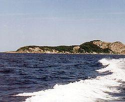 Ilha da Queimada Grande - Isla de las serpientes