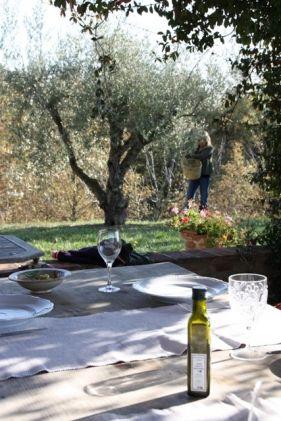 Italie, Umbrie, Casa San Carlo - Lekker eten & drinken- Appartementen - Agriturismo - 3 x per week mee eten