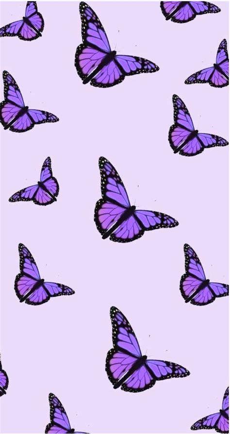 Purple Butterfly Aesthetic | Butterfly Wallpaper Iphone
