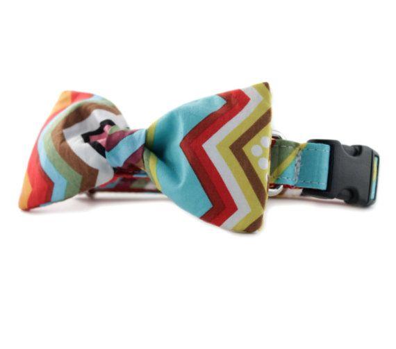 Multi-colored rainbow chevron bow tie dog collar - Rainbow Chevron Bow Tie Dog Collar - Adjustable bowtie dog collar - FREE SHIPPING