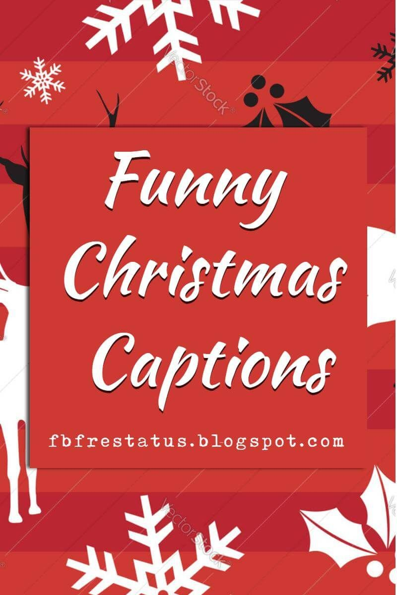 Christmas Captions.Instagram Christmas Captions Funny Thecannonball Org