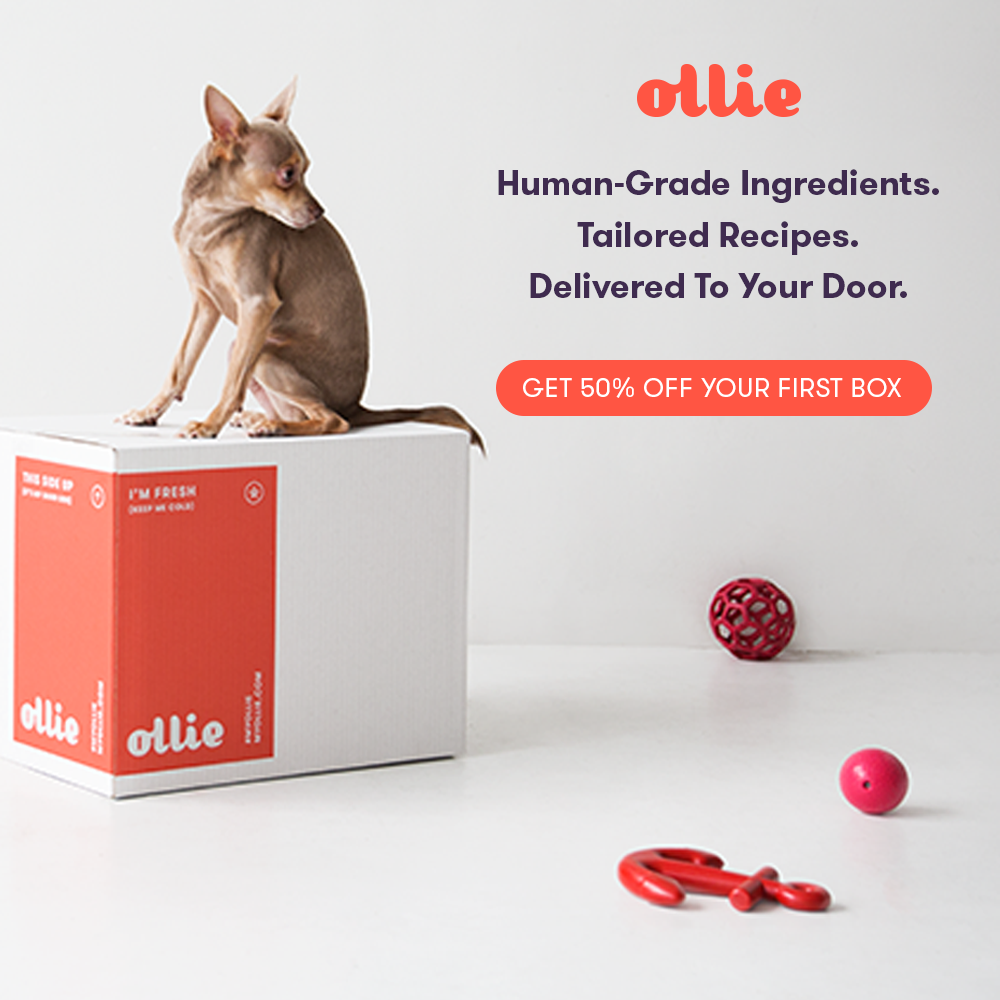 Ollie Pets Coupons Promo Codes Dog Subscription Food Subscriptions Food Animals