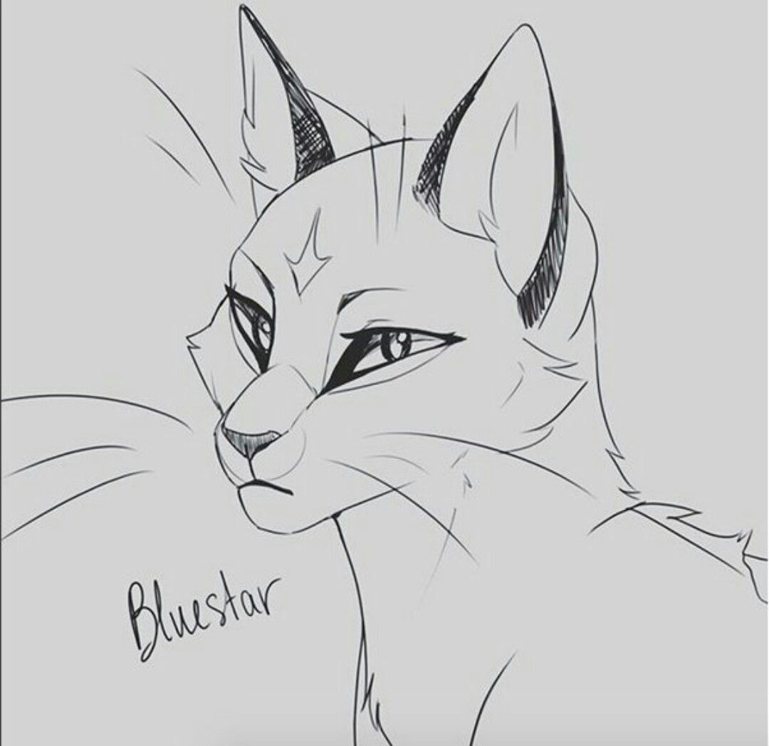 Pin By Ivypool On Warrior Cats With Images Warrior Cat