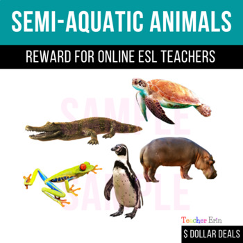 SemiAquatic Animals Reward for Online ESL Teachers