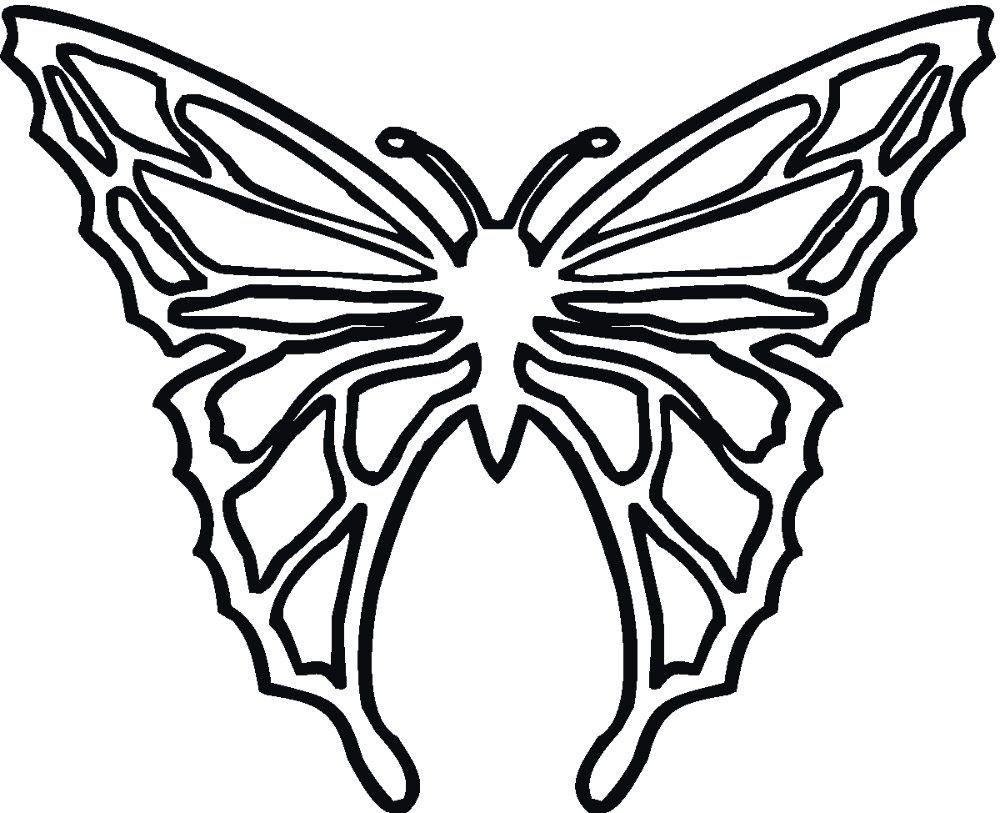 Mariposa dibujada para colorear | PNF | Pinterest | Mariposas para ...