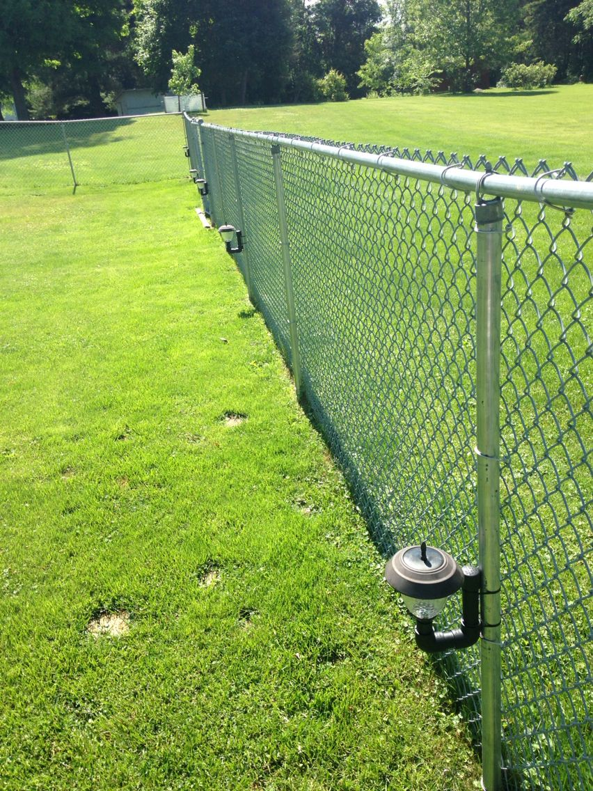 Landscape Lights With A Chain Link Fence Backyard Fences Chain Link Fence Dog Fence