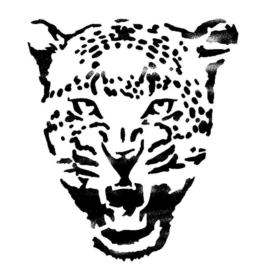 Cheetah T Shirt Designs