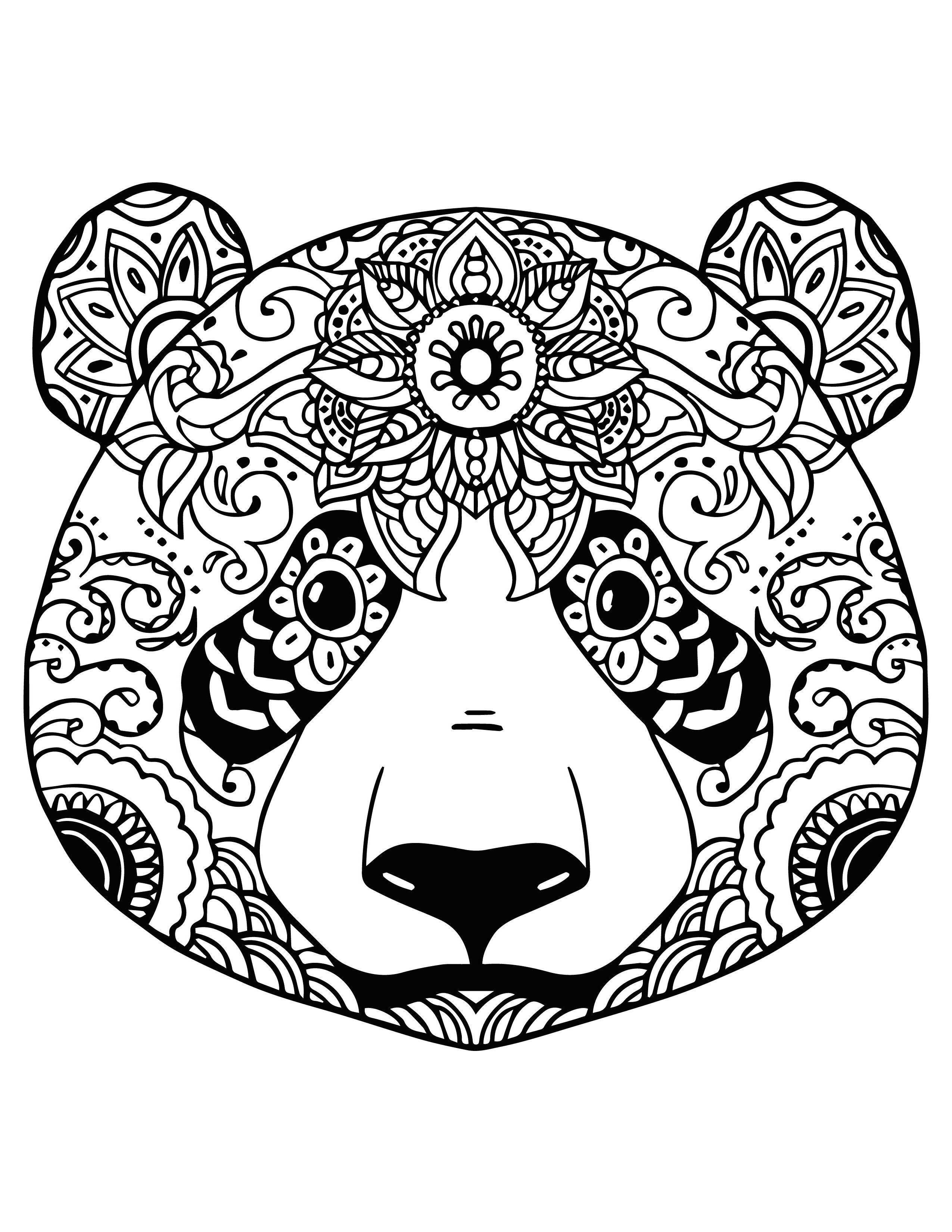 Coloriage Panda Roux 14 Précieux Coloriage Panda Roux