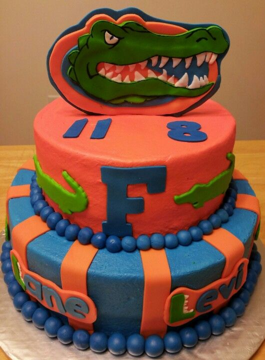 Pleasant Florida Gators Birthday Cake Florida Gators Florida Gators Personalised Birthday Cards Veneteletsinfo