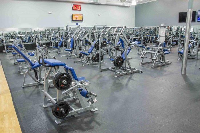 Weight Area Gym Photography Gym Photos Gym