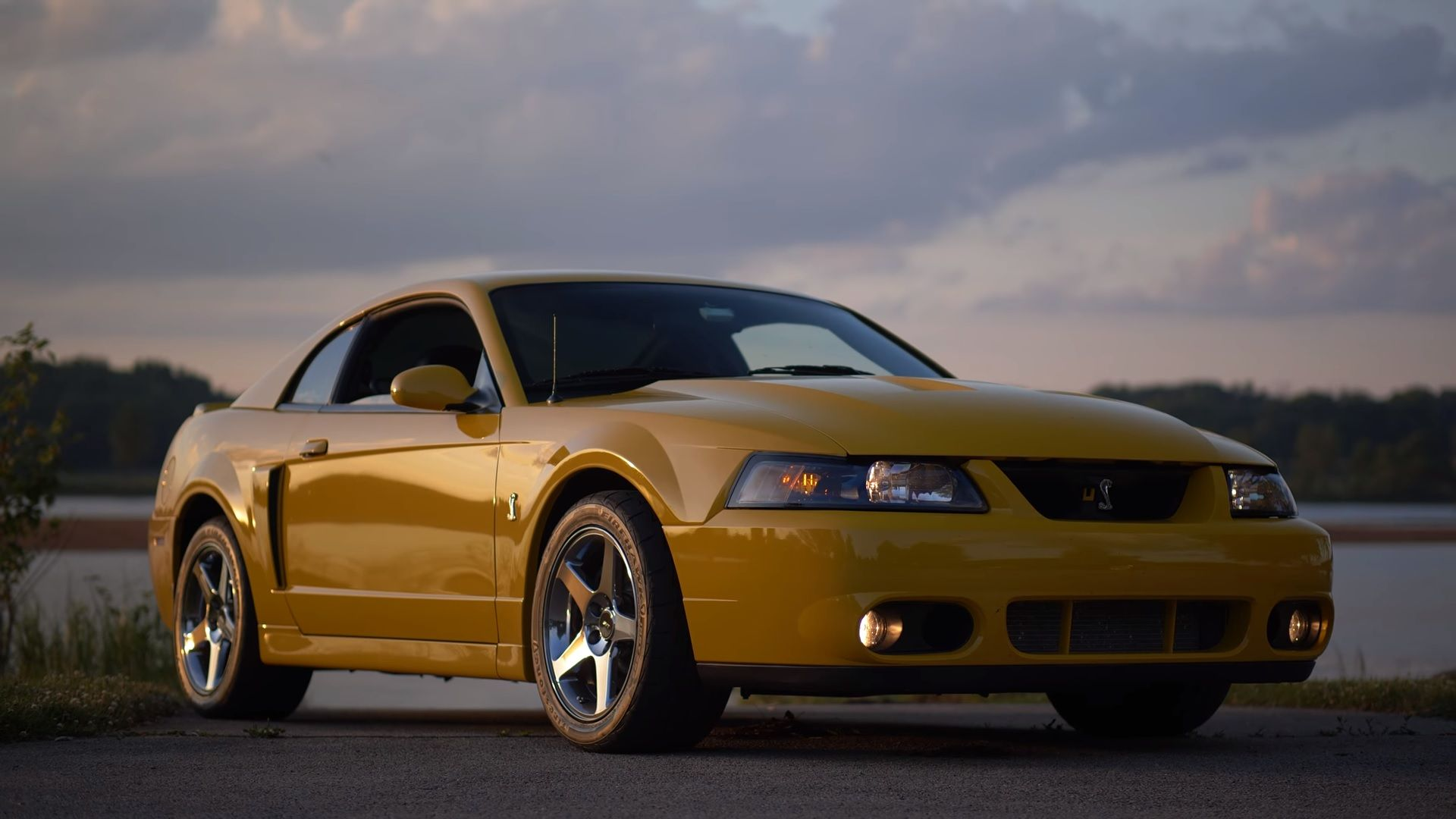 This 2003 2004 Svt Cobra Terminator Is The Car You Probably Forgot About Top Speed Svt Cobra Terminator Mustang Cobra Terminator