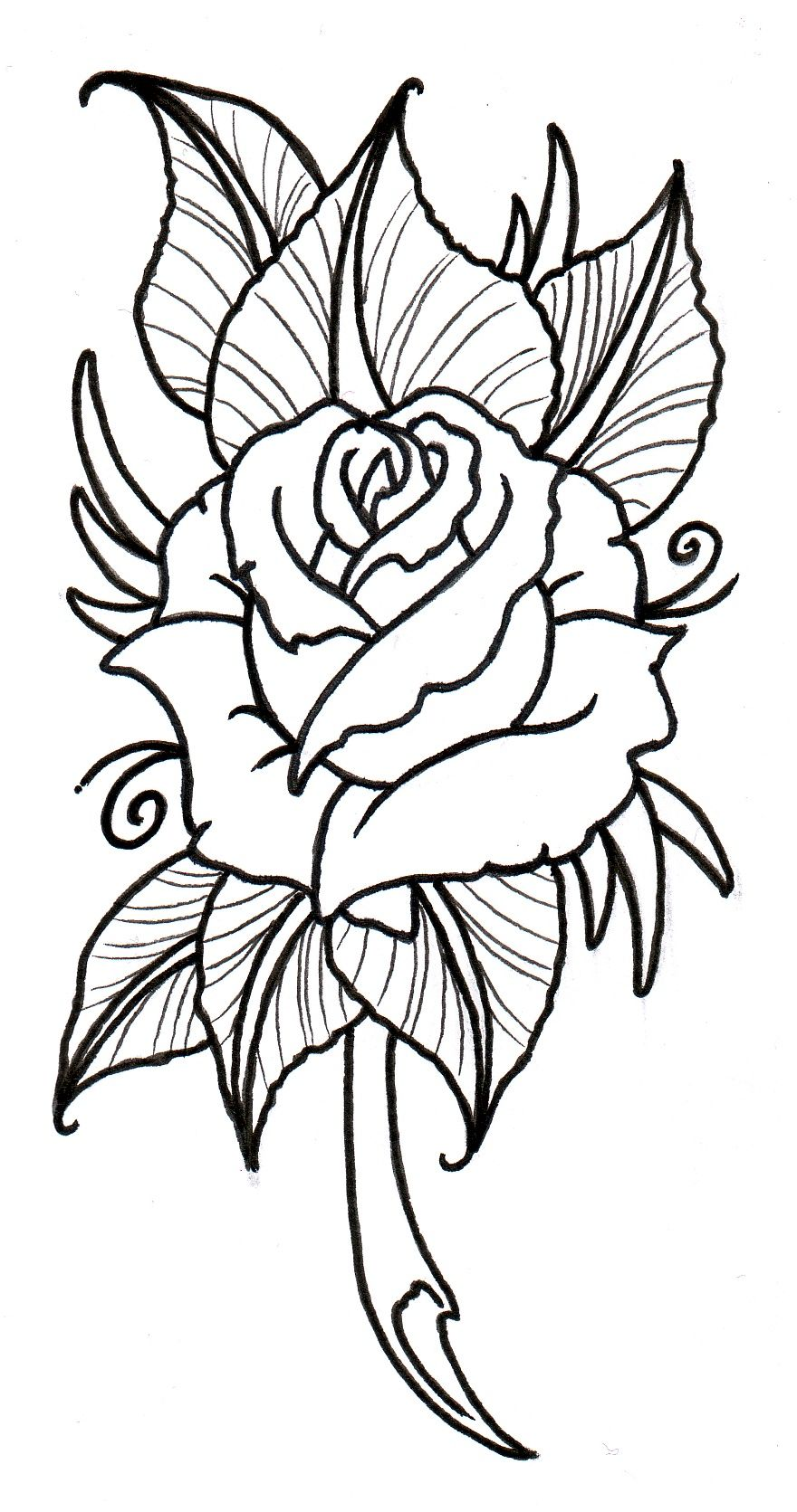 Neo Traditional Flower Outline Wiring Diagrams Png 52kb 100w Mosfet Power Amplifier Circuit Using Irfp240 Irfp9240 Rose By Vikingtattoo Deviantart Com On Rh Pinterest Tattoo Outlines Magnolia