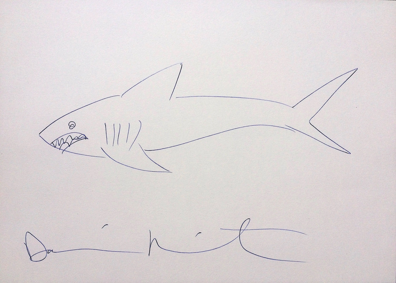 Damien Hirst Signed Original Shark Drawing On Paper Drawing Etsy Custom Framing Paper Drawing Shark Drawing