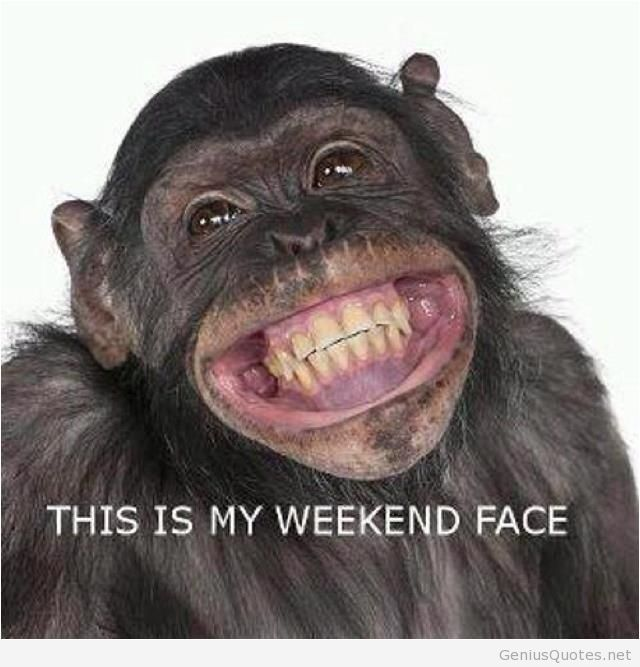 Funny Monkey Weekend Face Quotes Pinterest Monkeys Funny Smiling Animals Funny Animals