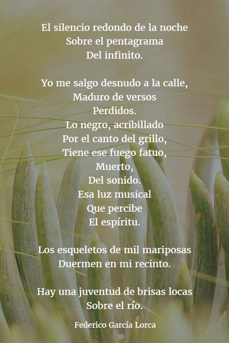 Los Mejores Poemas De Federico García Lorca Versos Garcia Lorca Poemas Poemas Poemas De Amor Libros
