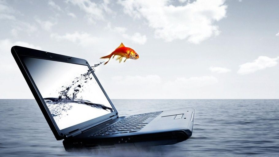 Computer Jump From Laptop Water Laptop 3d Fish Hd