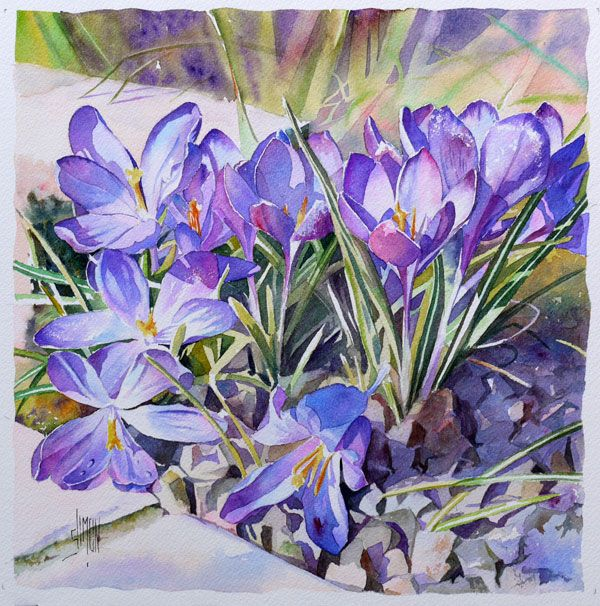 Crocus Demonstration In Watercolor By Joel Simon The Light Is