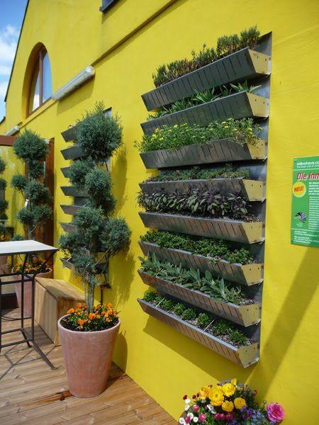 herb garden in a shelf