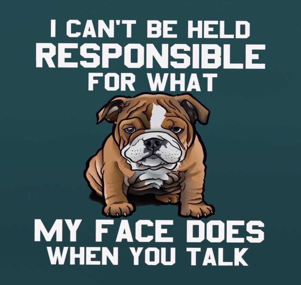 ENGLISH BULLDOG Can/'t Have Just One FRIDGE MAGNET Dog