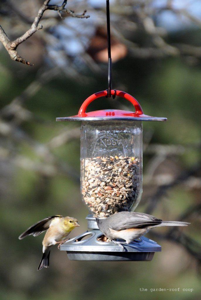 Inspirational Bird Feeder for Balcony Railing
