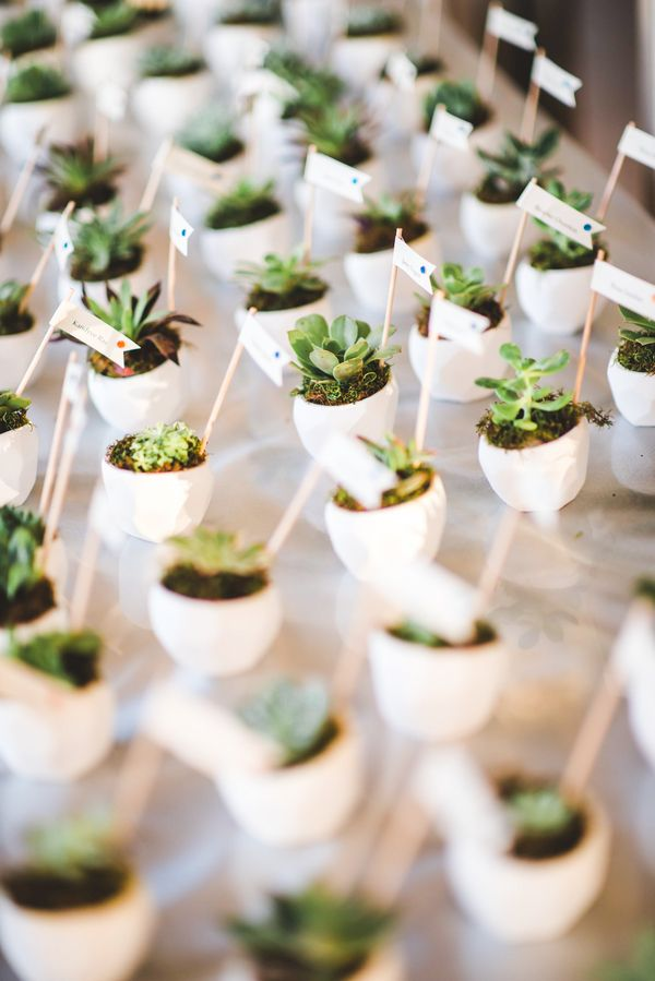 Let Love Grow Succulent Favors That Double As Cards Palmero Photography On