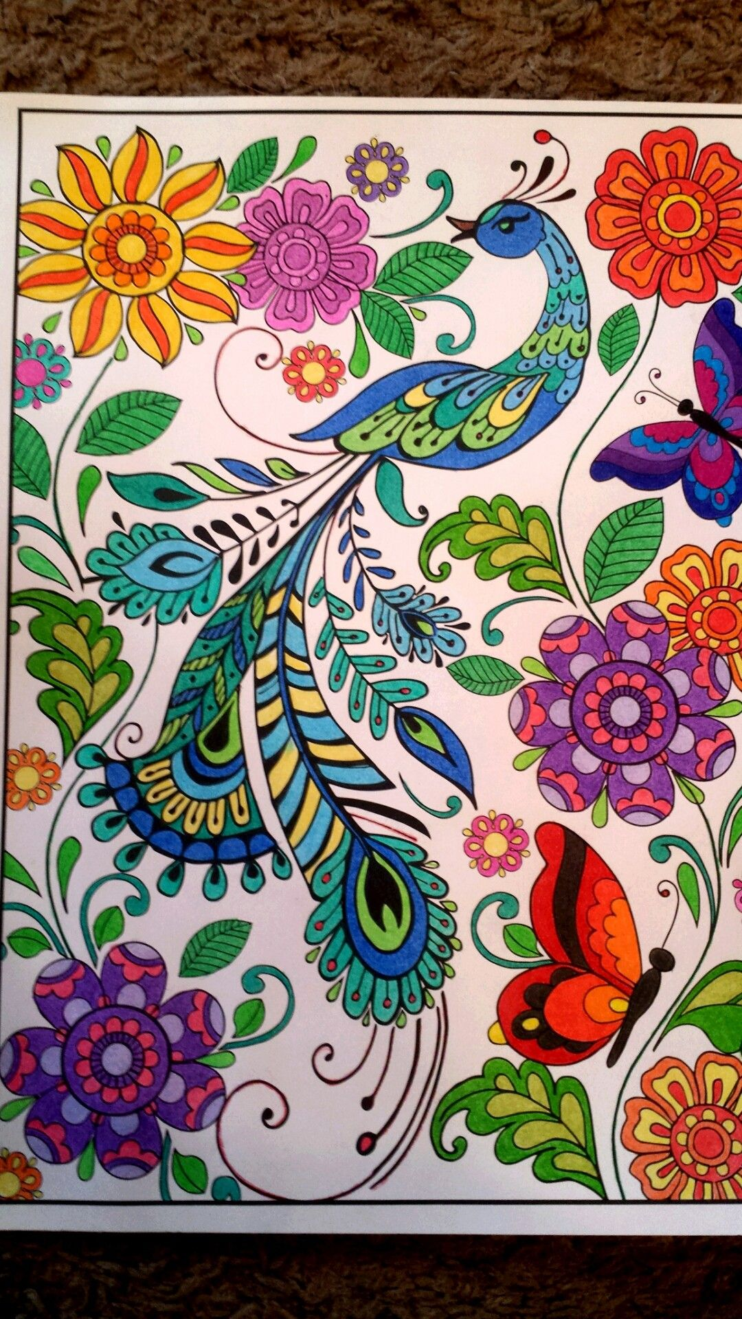 PEACOCKS FOR COLORING image by Becky Braswell-White ...