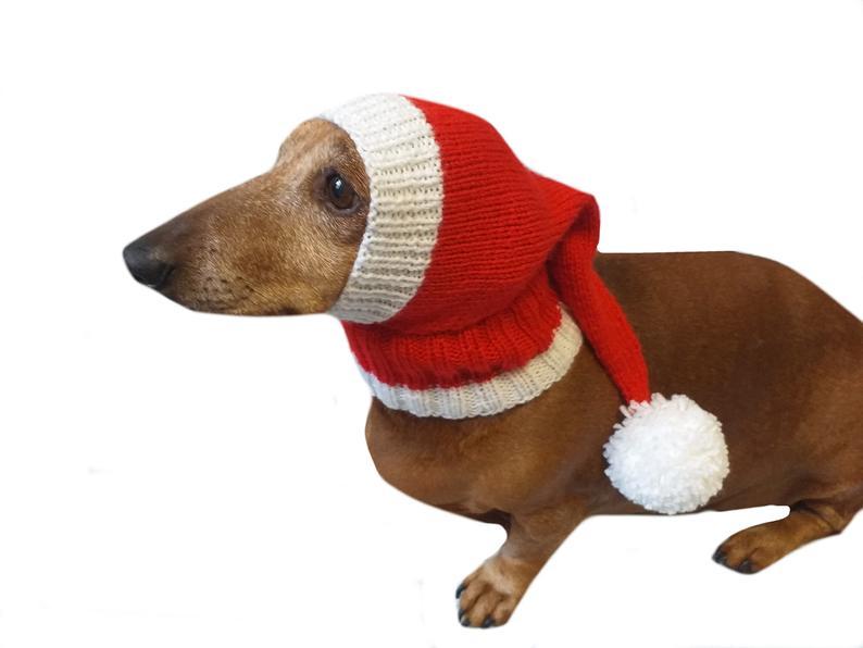 Santa Hat For Dog Christmas Santa Hat For Dog Santa Hat For Etsy In 2021 Dog Hat Dog Sweaters Christmas Dog