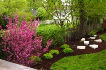 Traditional Landscape/Yard - Found on Zillow Digs