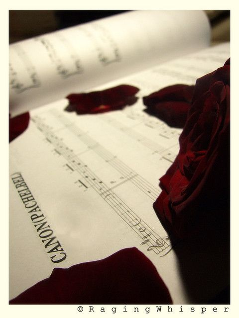 Music Pachelbels Canon In D