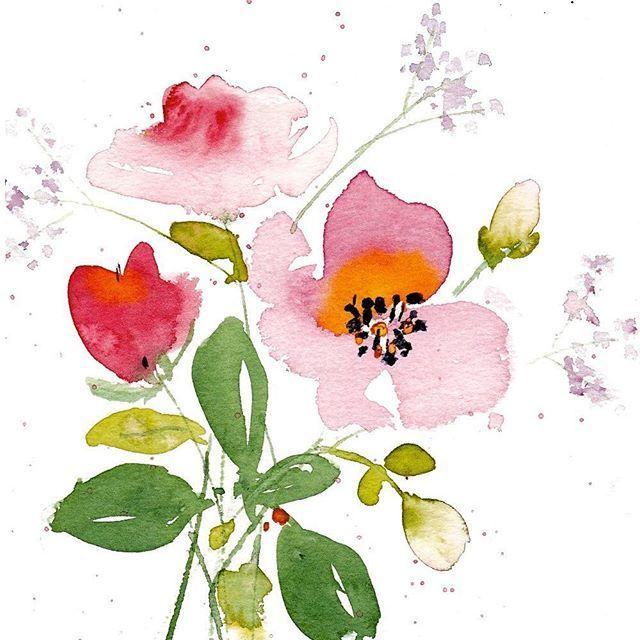 Aquarelle Fleurs Aquarelle Fleurs Flowers