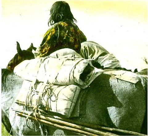 indians and horses