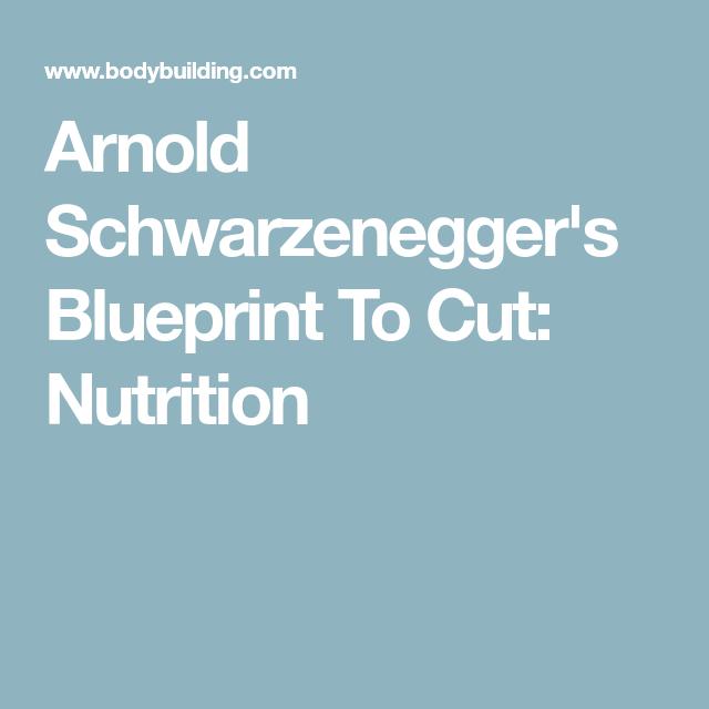 Arnold schwarzeneggers blueprint to cut nutrition nutrition arnold schwarzeneggers blueprint to cut nutrition malvernweather Gallery