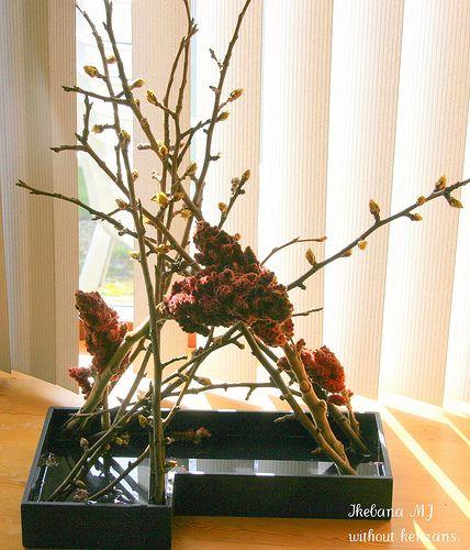 Ikebana without kenzans. | Marianne de Wit. | Marianne de Wit | Flickr