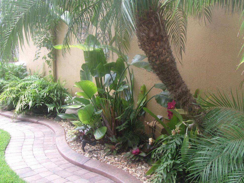 Tropical florida tropical landscape miami for Pool garden edging